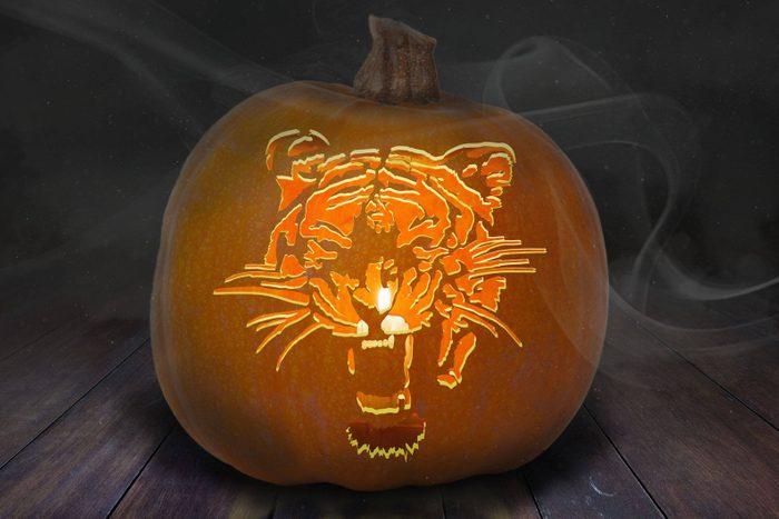 Tiger Carved Pumpkin