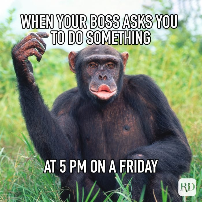 When Your Boss Asks You To Do Something At 5pm On A Friday
