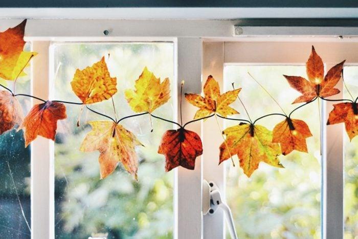 Autumn Leaf Fairy Lights