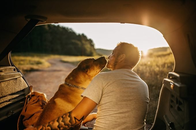 man sitting with his dog in the trunk of his car during sunset