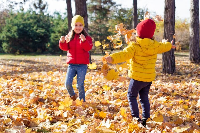 Children two cute toddler girls having fun with yellow leaves on sunny warm day in autumn, kids throw leaves, young friends play activity fall concept outdoors.