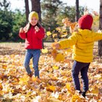 43 Fall Activities to Add to Your Bucket List
