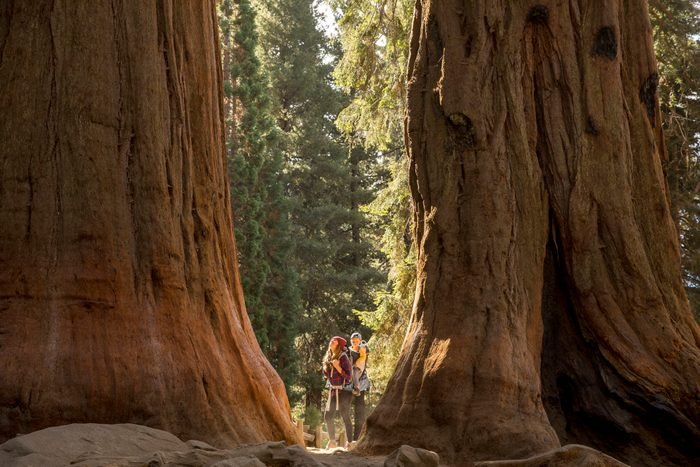 A mother and her son hiking in Sequoia National Park.