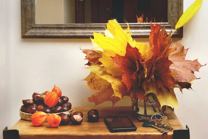 Autumn plant decorations in interior.