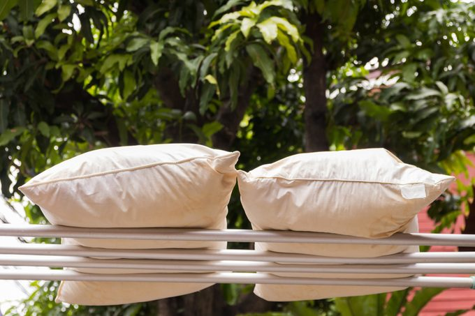 Pillows air drying in the sun to plump up again