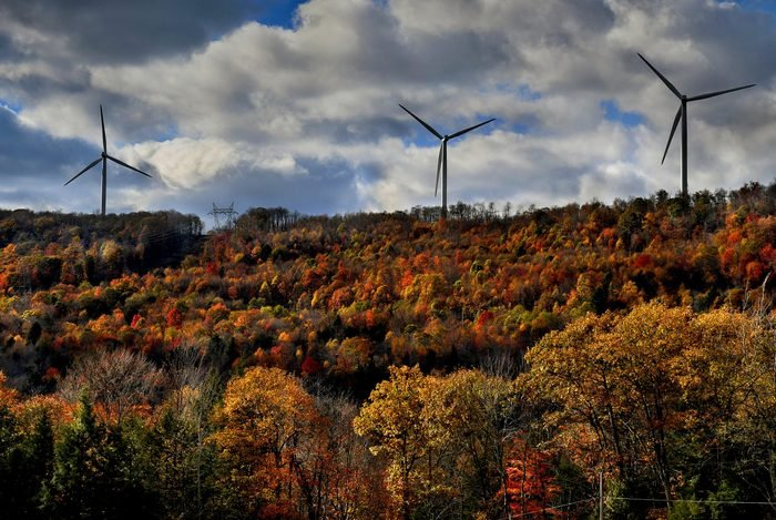 Fall Colors are More Vibrant in the Higher Elevations
