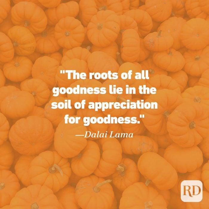 Thanksgiving Quote by Dalai Lama
