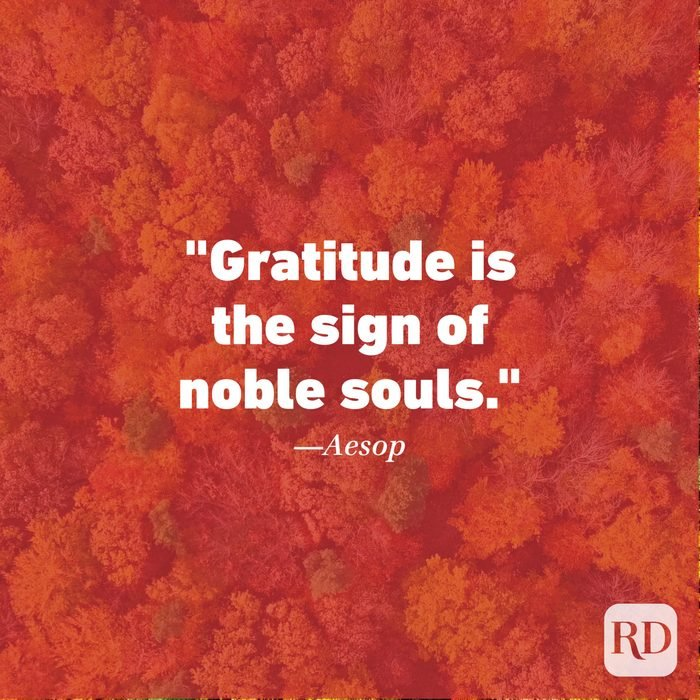 Thanksgiving Quote by Aesop