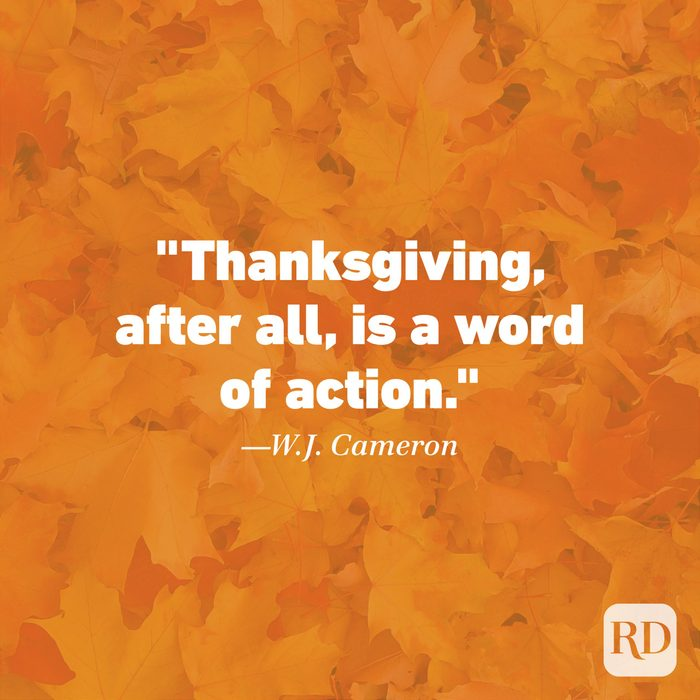 Thanksgiving Quote by W.J. Cameron