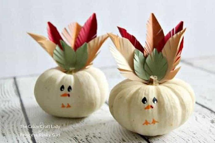 Turkey Mini Pumpkins
