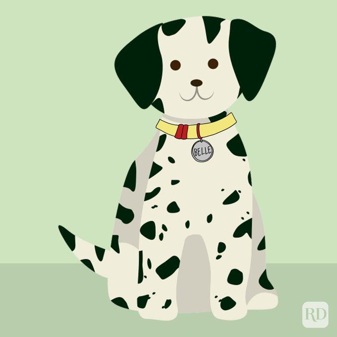 Disney Dog Names Belle