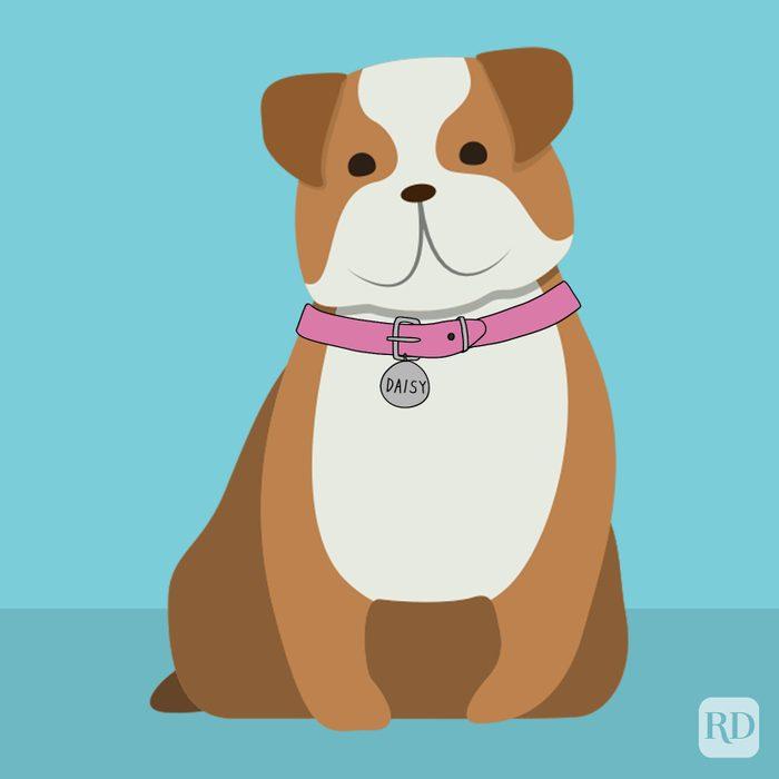 Disney Dog Names Daisy