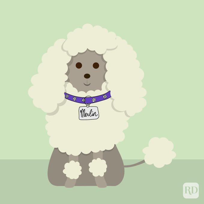 Disney Dog Names Merlin