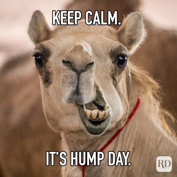 Keep Calm Its Hump Day meme text