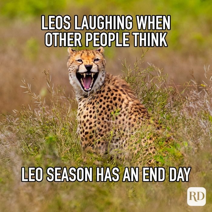 Leos Laughing When Other People Think Leo Season Has An End Day meme text