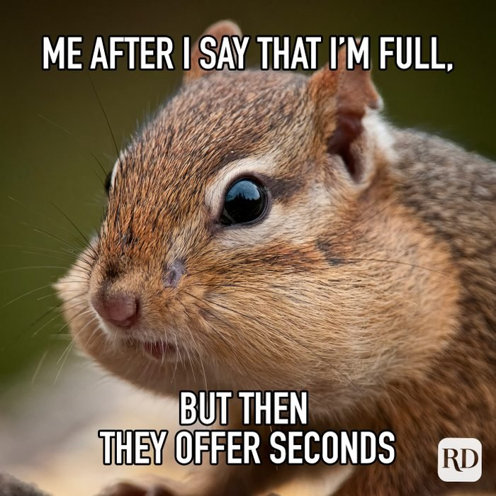 Me After I Say That Im Full But Then They Offer Seconds meme text on image of chipmunk with cheeks stuffed