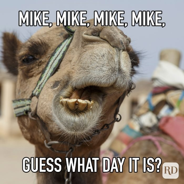 Mike Mike Mike Mike Guess What Day It Is meme text