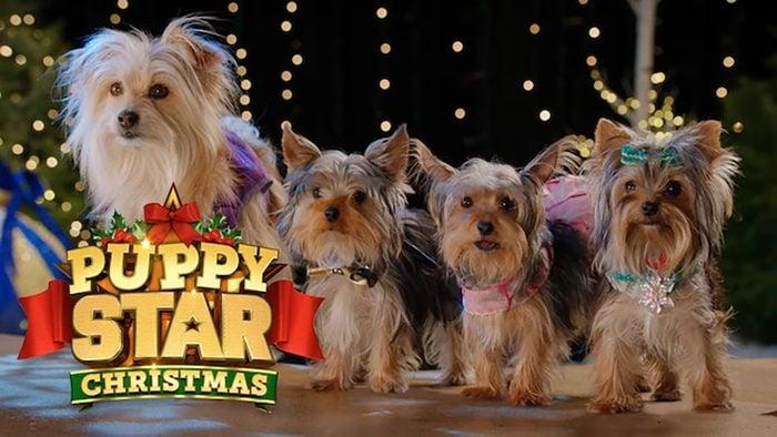 Puppy Star Christmas Movie