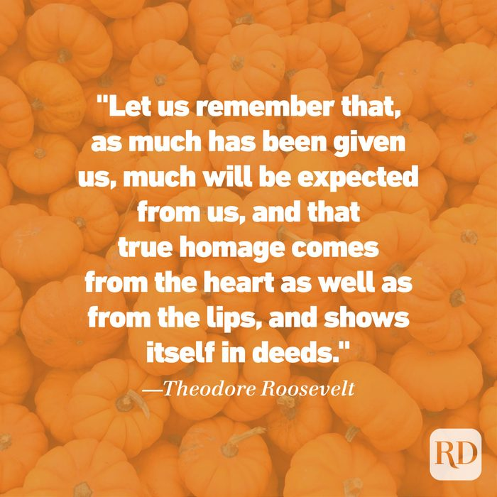 Thanksgiving Quote by Theodor Roosevelt