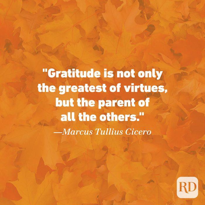 Thanksgiving Quote by Marcus Tullius Cicero