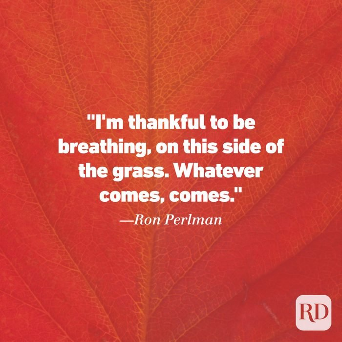 Thanksgiving Quote by Ron Perlman