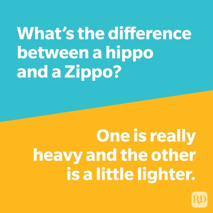 Whats The Difference Joke   Hippo Vs Zippo