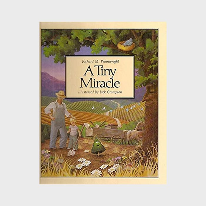 A Tiny Miracle By Richard M. Wainwright And Illustrated By Jack Crompton Via Amazon