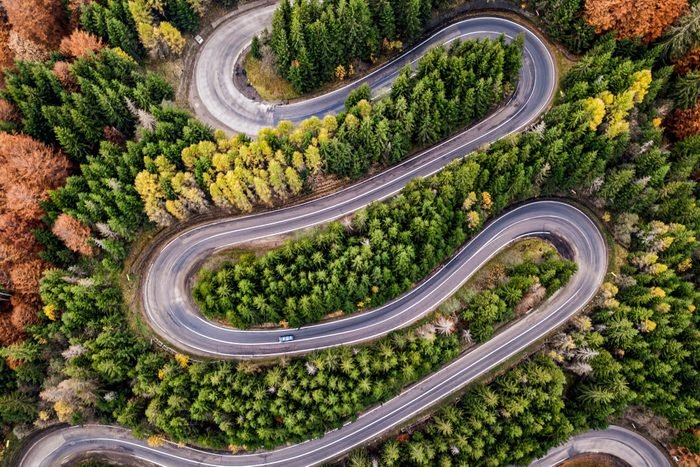 Aerial View Of Winding Road Amidst Tree
