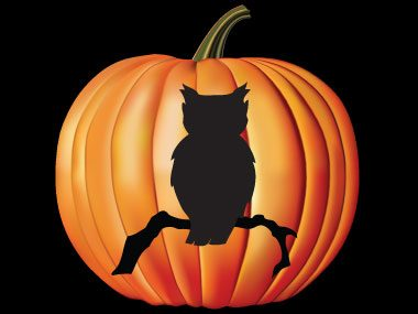pumpkin carving patterns free ideas from 27 stencils reader s