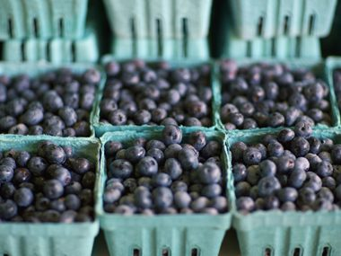 The 15 Best Superfoods for Diabetics   Reader's Digest