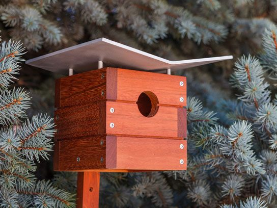 7 Unique Bird Houses You Wish You Could Move Into Reader