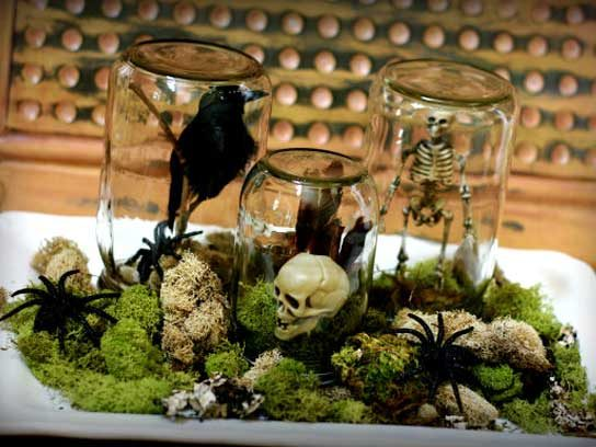 spooky terrarium - Decorating For Halloween On A Budget