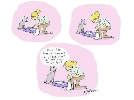 Cartoon Cats All Cat Lovers Will Appreciate Reader S Digest