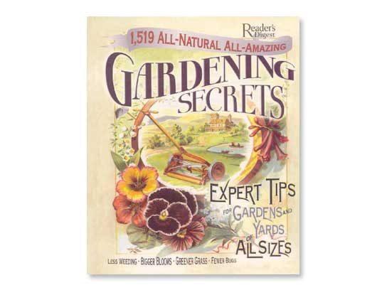 Companion Planting Herbs That Help Plants Grow Reader S