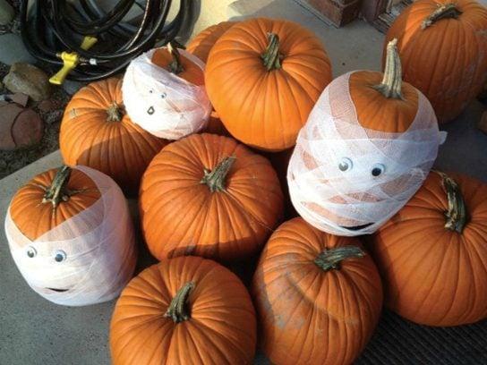 mummy pumpkin - Pumpkin Decoration