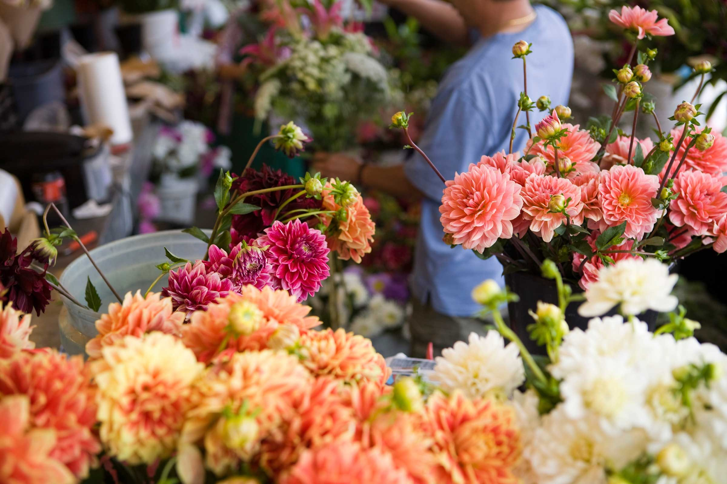 Most flower shops restock on Monday mornings