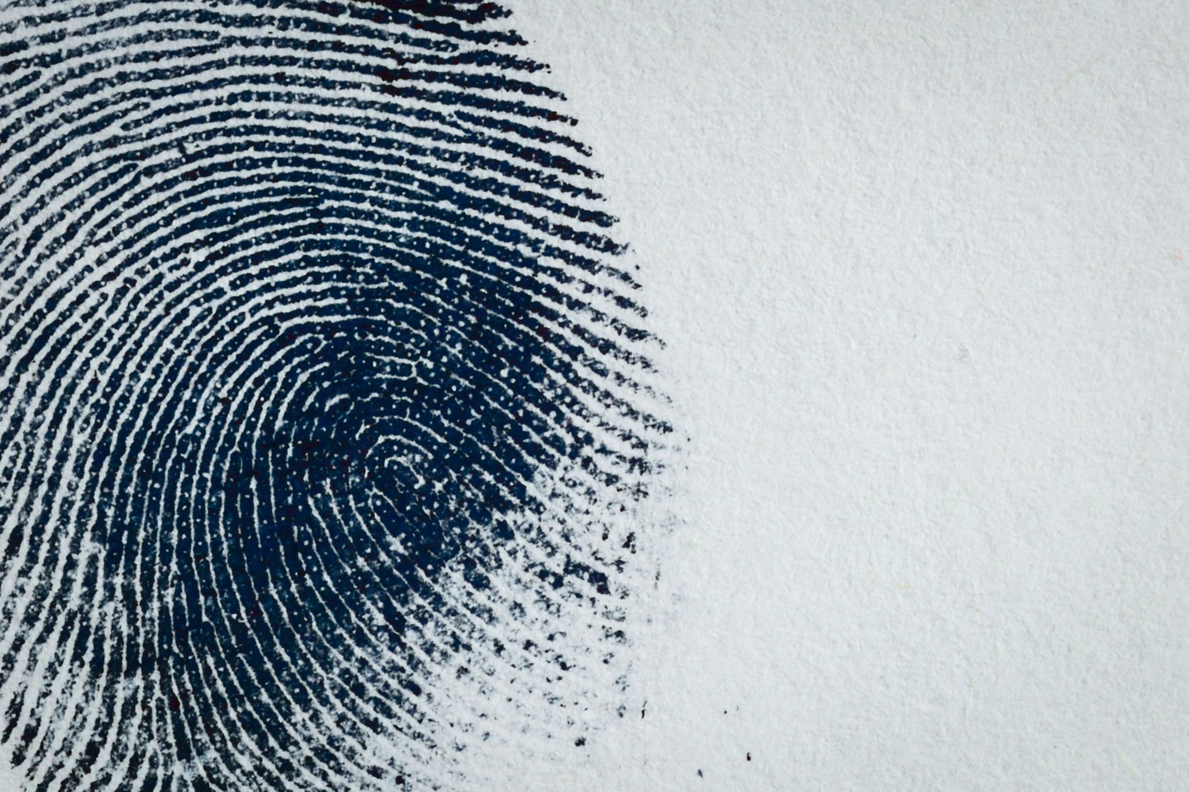Integrated automated fingerprint identification system