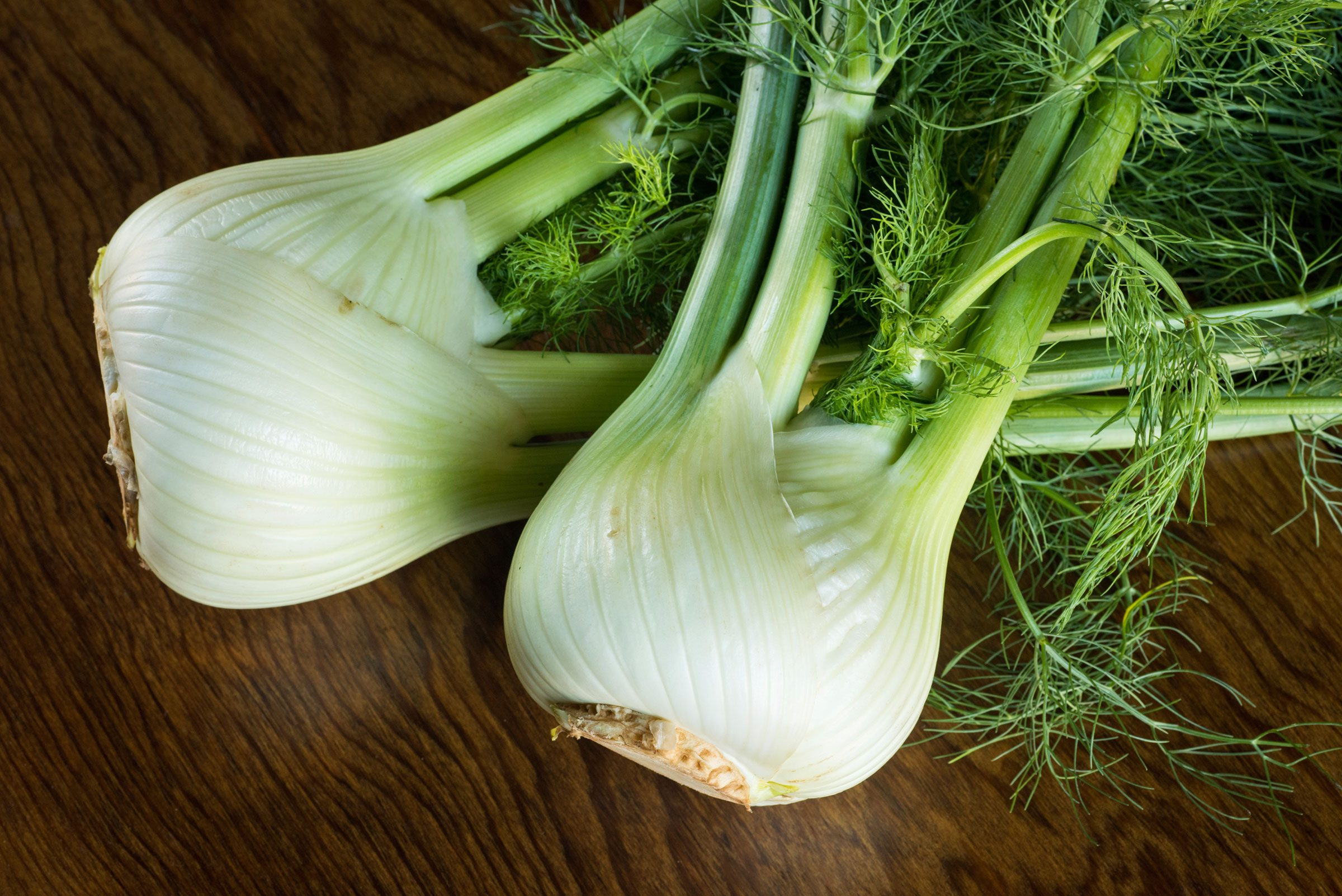 Fennel Makes an Upset Stomach Feel Better