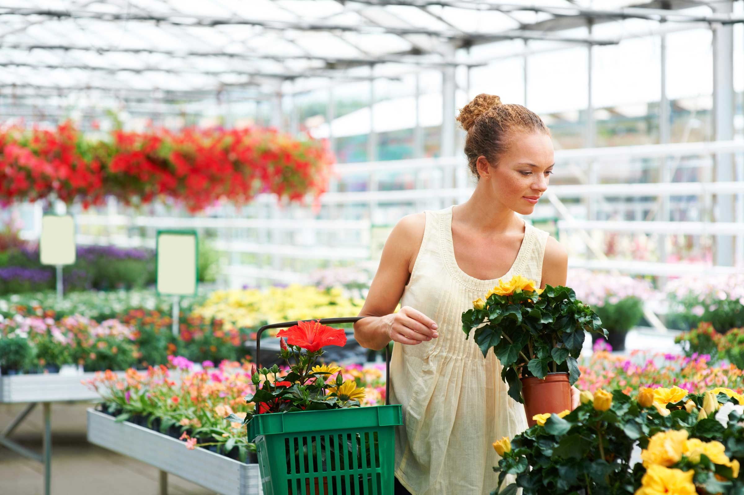 13 Things Your Florist Won t Tell You