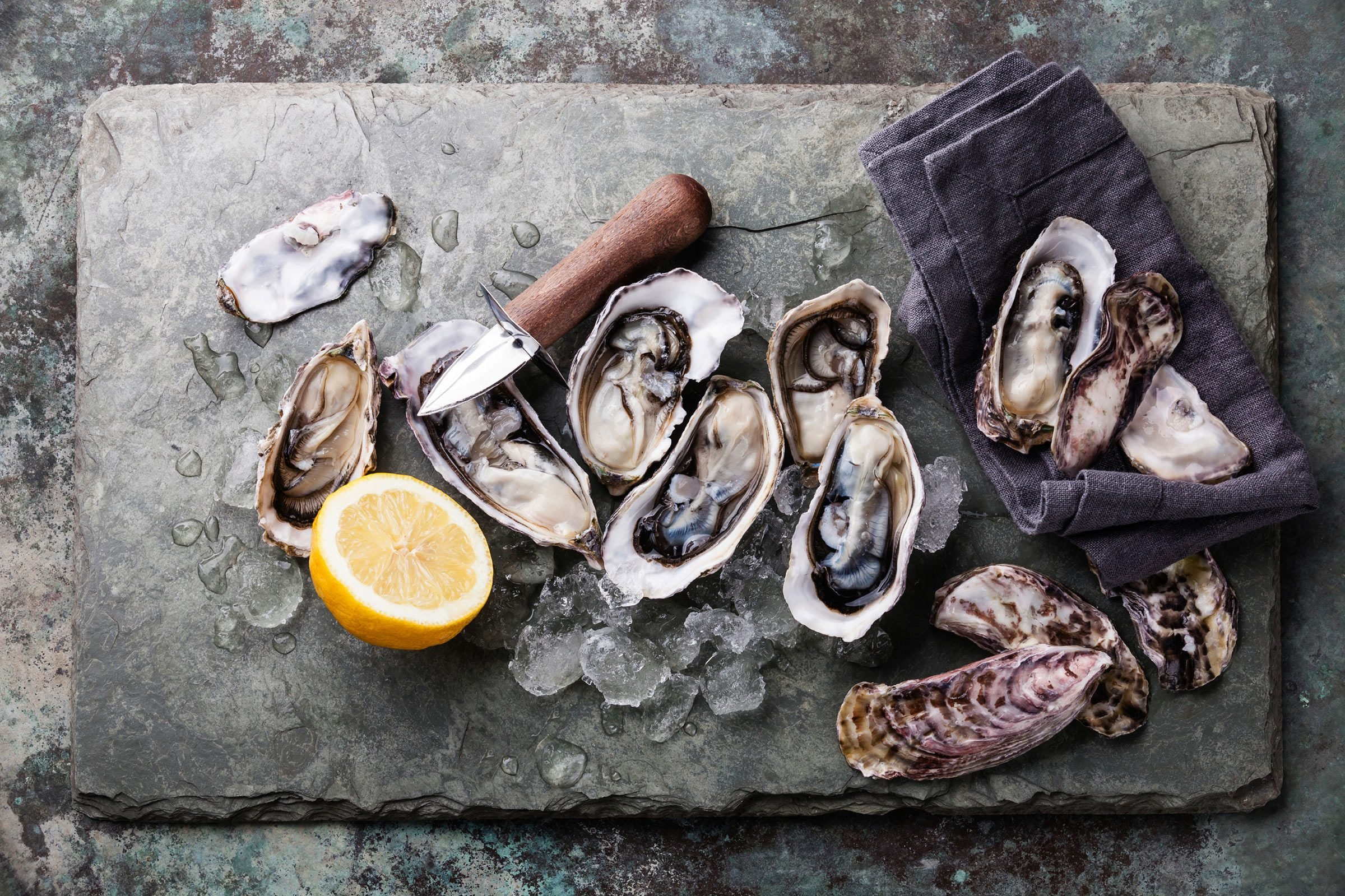 Oyster From Kalamazoo