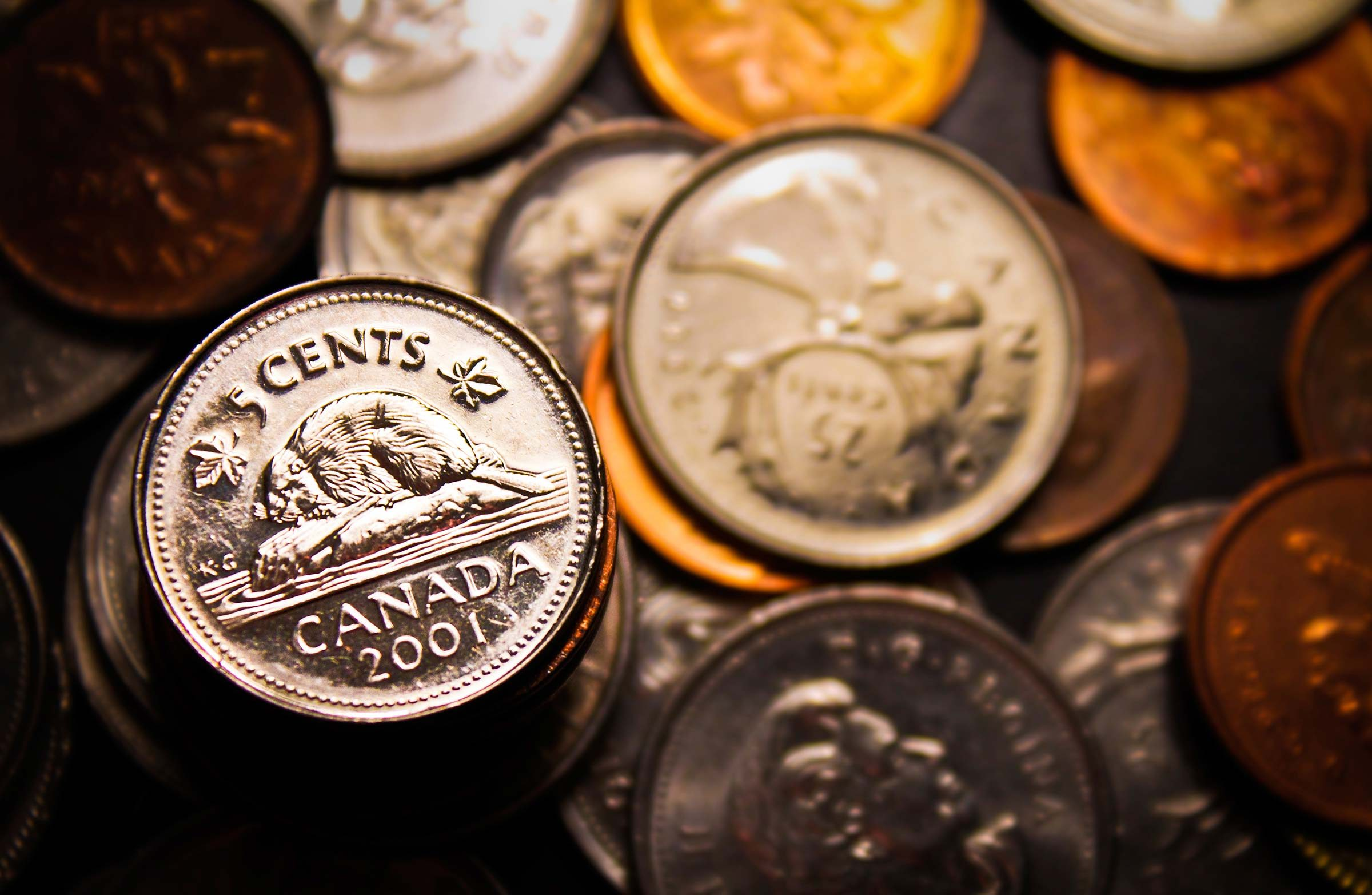 13. Don't empty your piggy bank for purchases in Canada