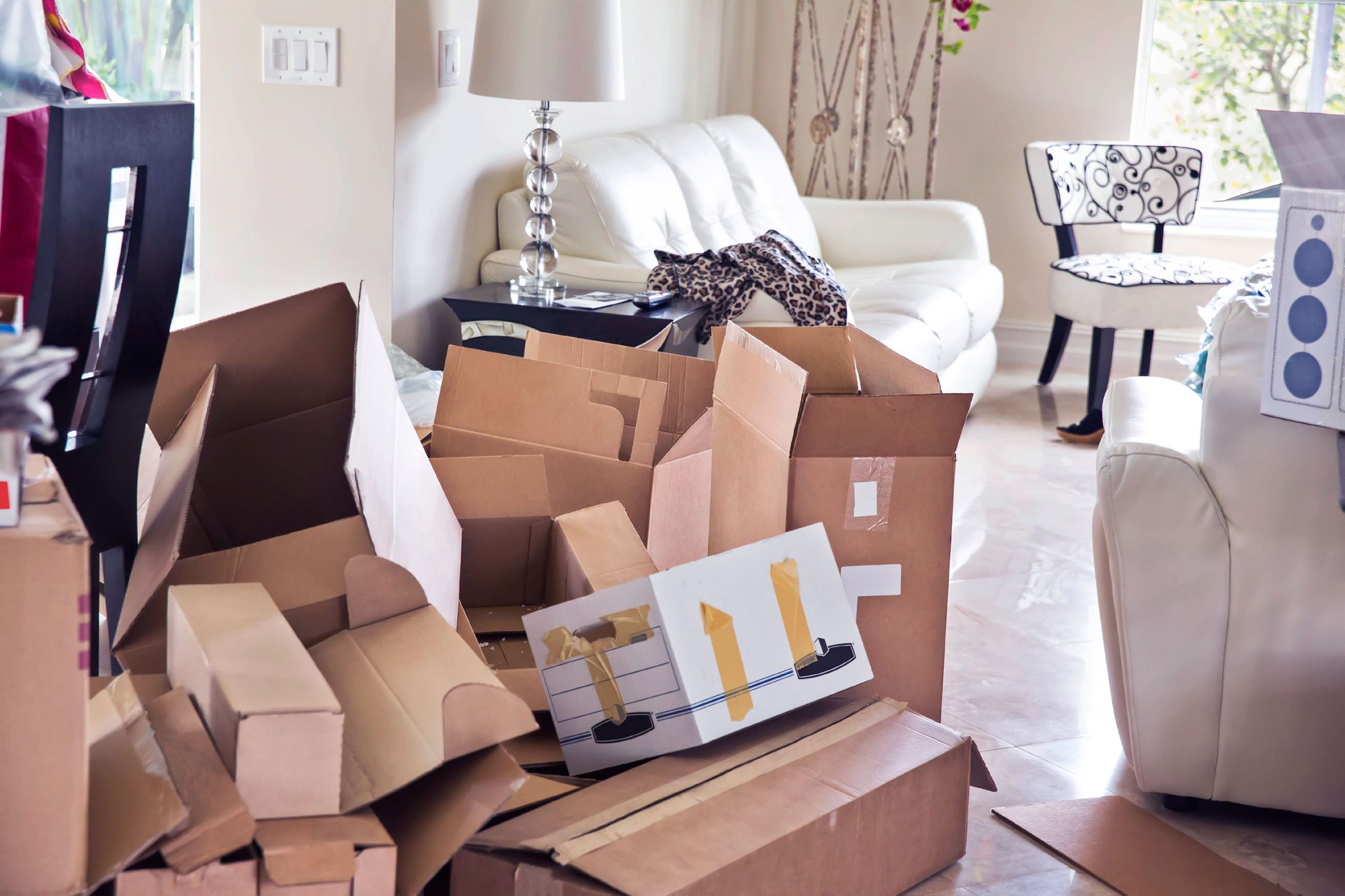 How to clean your living room in 5 minutes - Ditch The Cardboard