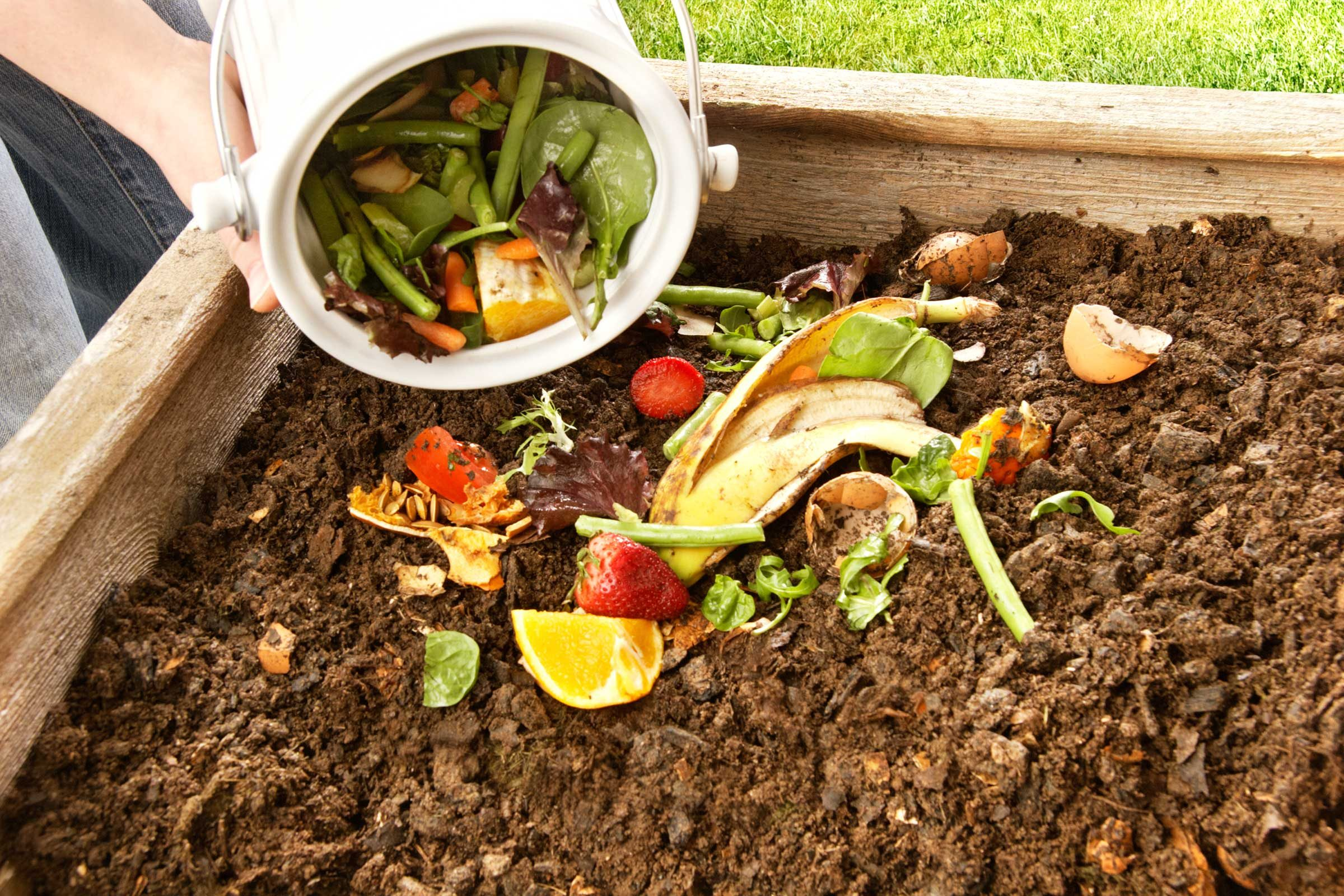 Fall Composting
