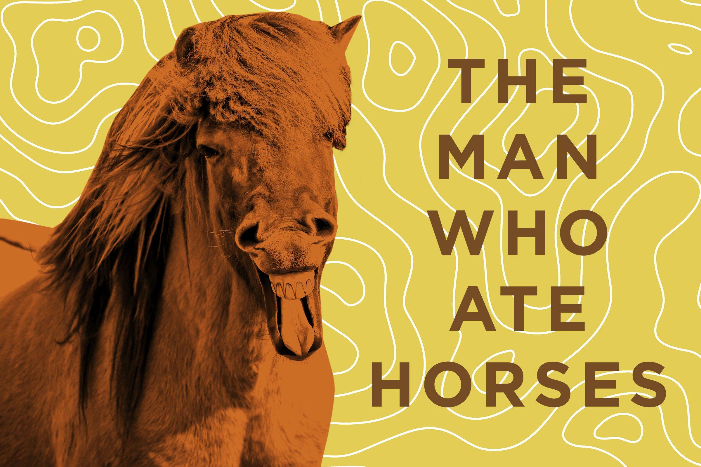 Horse jokes - photo#31