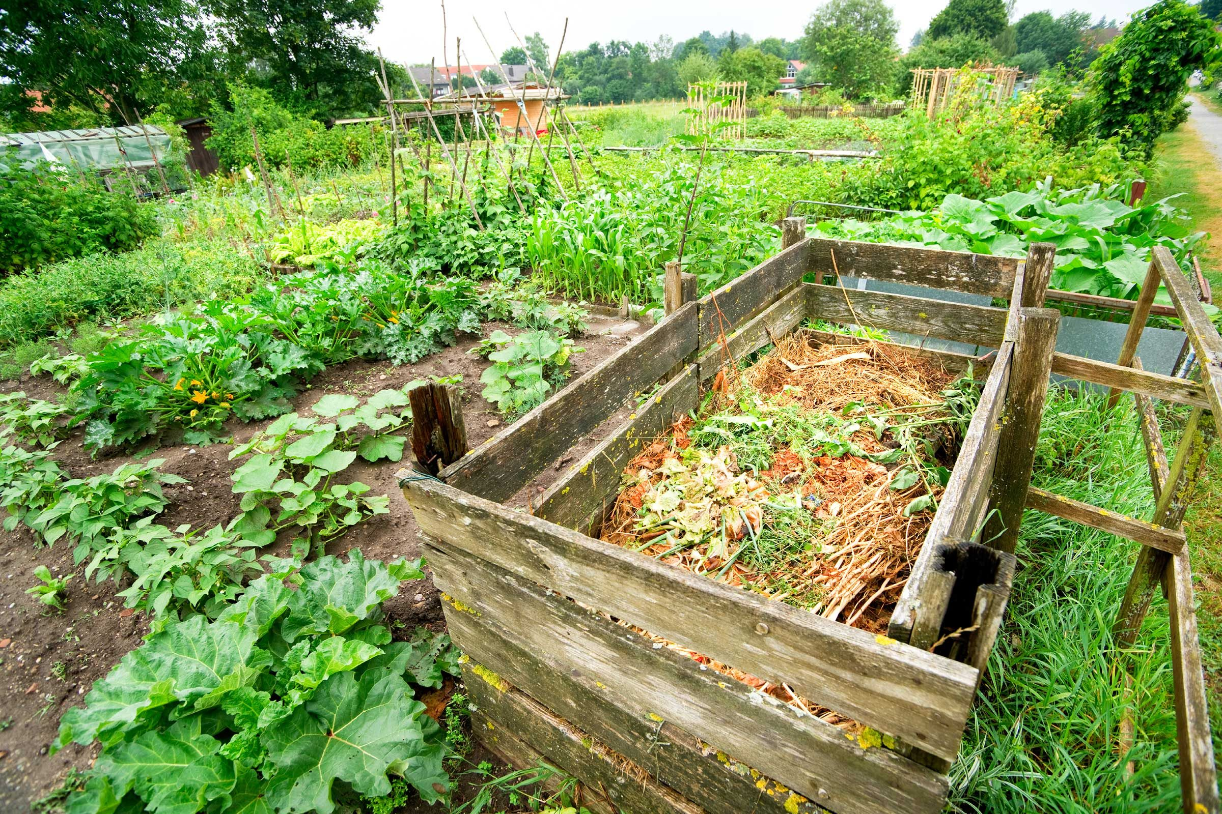 Что построить на огороде - Рабочая программа для 1 младшей группы по ФГОС