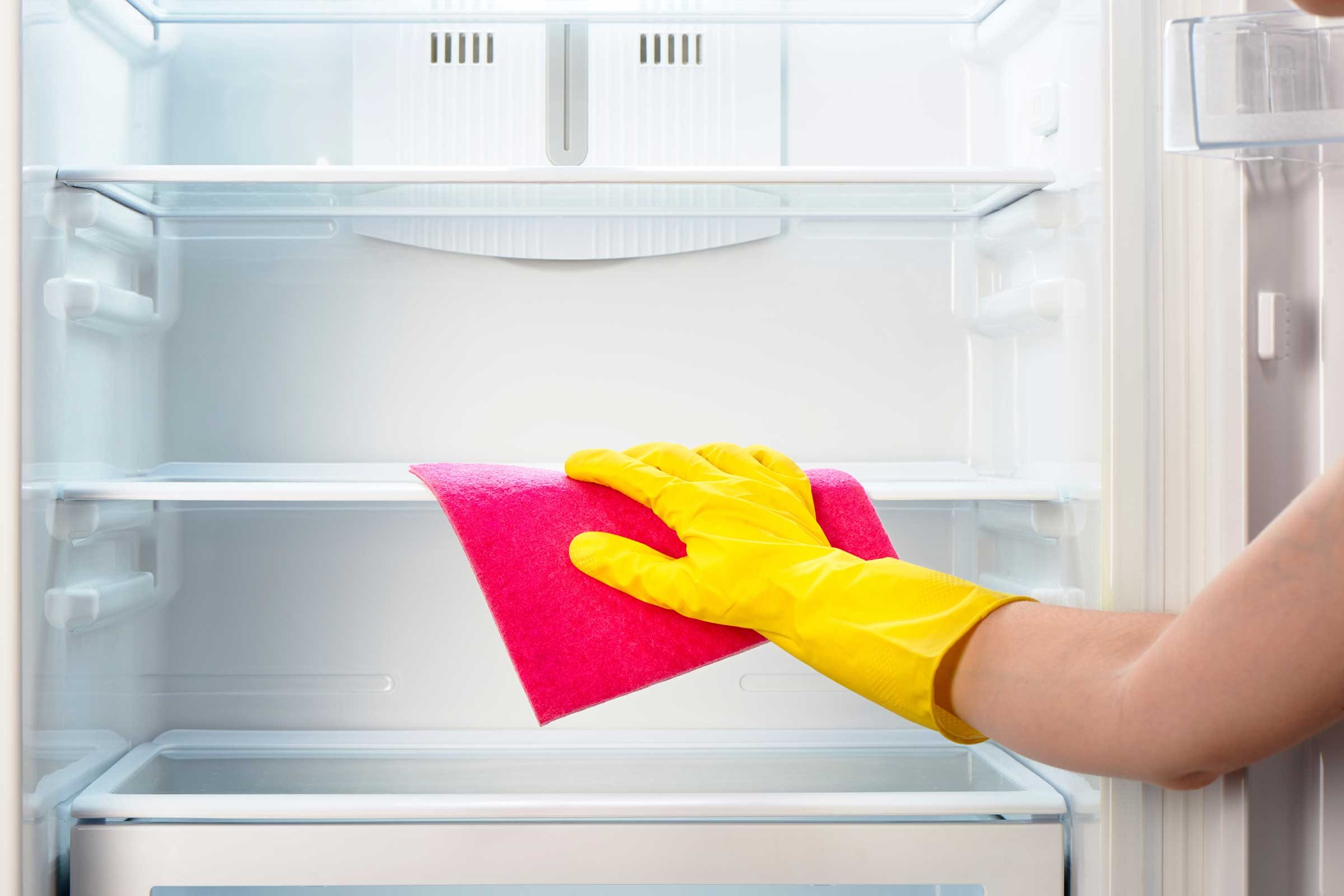 Clean the tray under the fridge with a bleach solution and sprinkle with salt