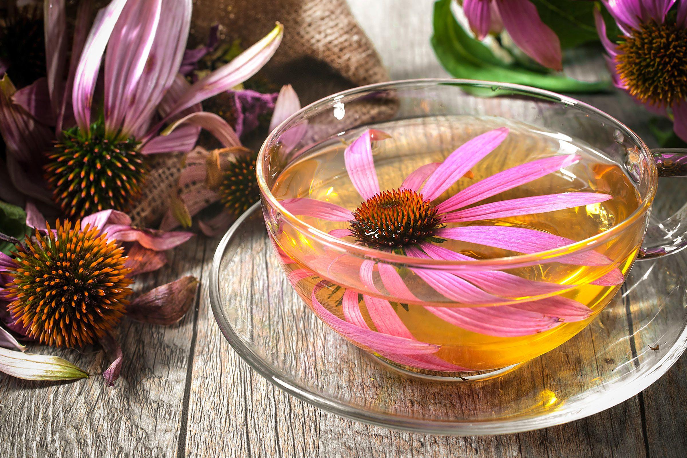 Acne home remedy: Echinacea