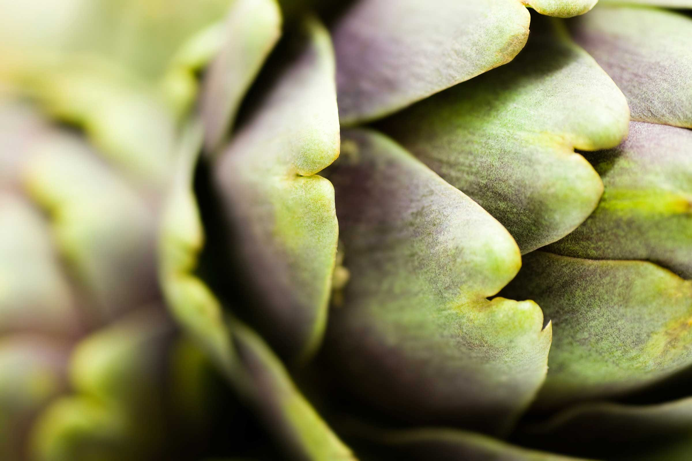 Learn to eat artichokes tonight