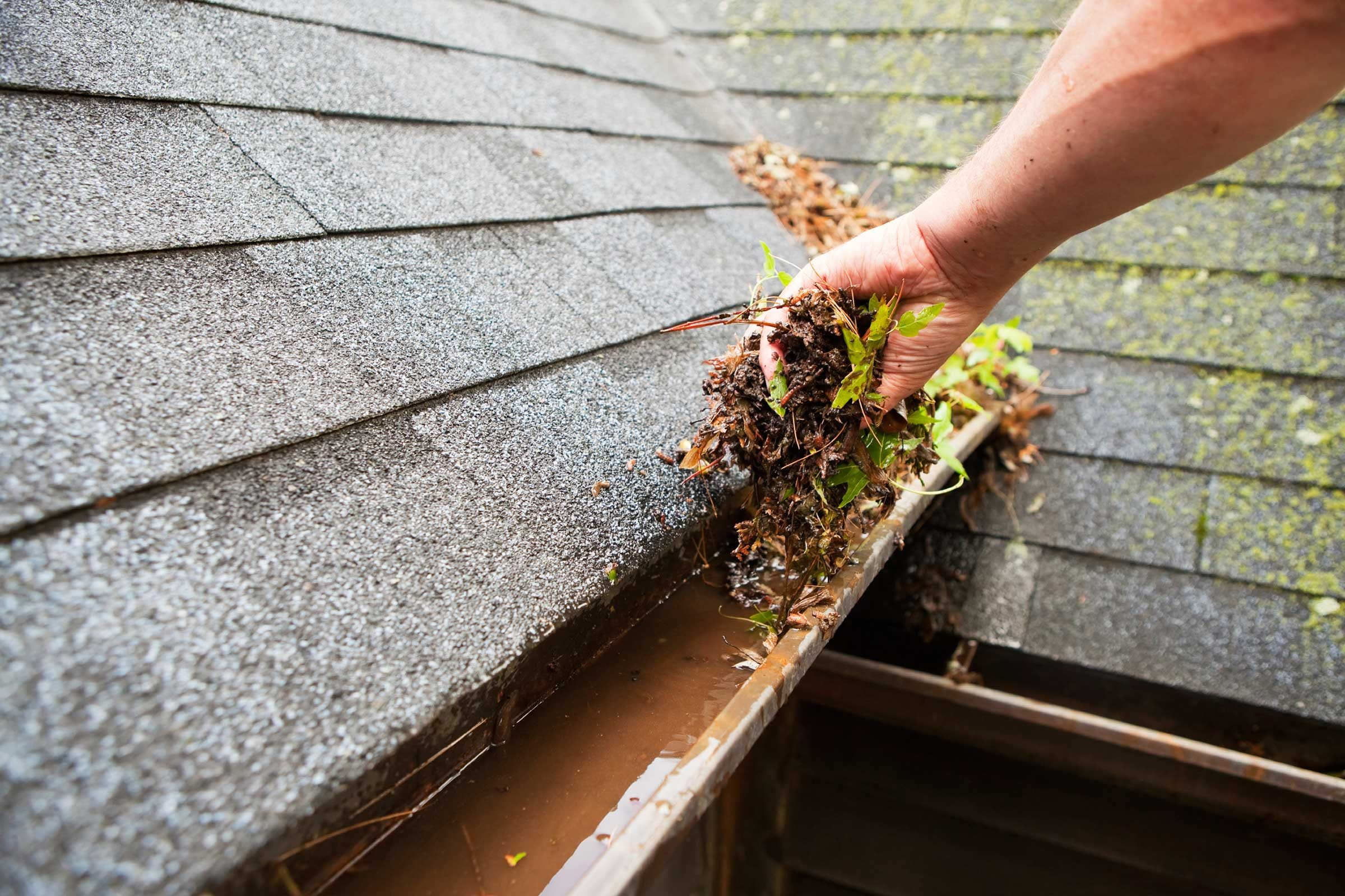 Clean out your gutters and make sure they're not clogged