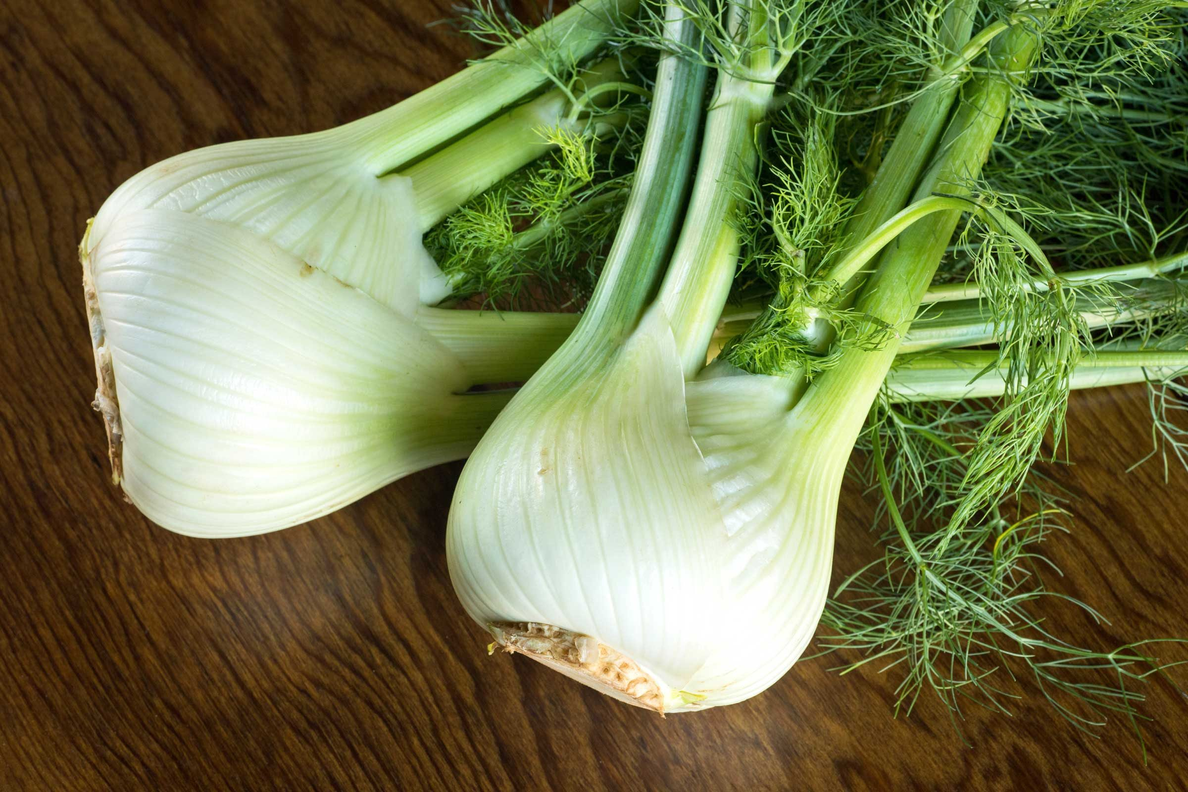 Find some fennel